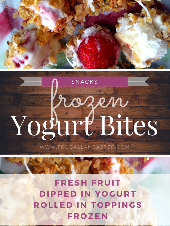 Frozen Yogurt Bites: A Healthy Simple Snack You Can Make With Kids (and toddlers too!)