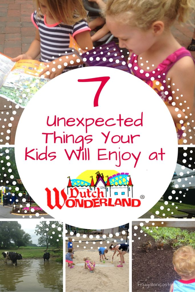 7 unexpected things your kids will enjoy