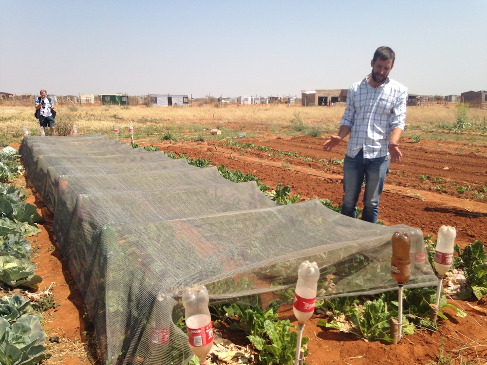 south africa advocacy agriculture drip irrigation