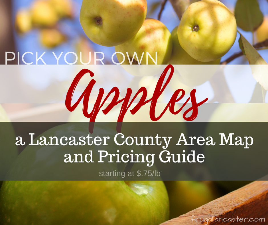 pick-your-own-apples in lancaster county, pa