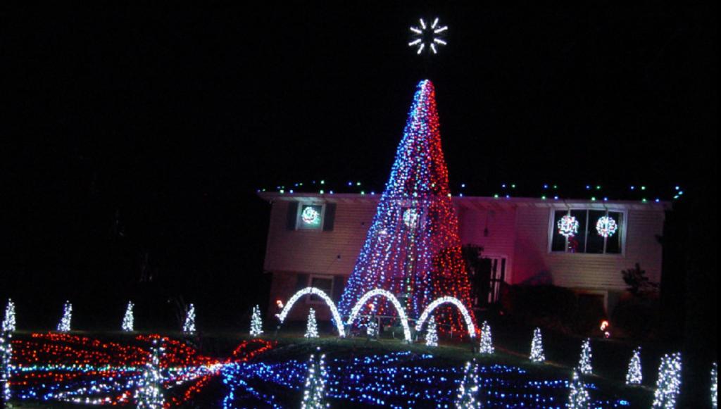 manheim christmas light show