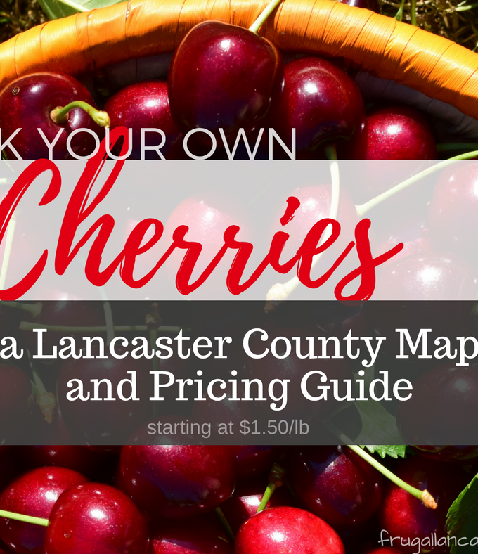 Pick Your Own Cherries in Lancaster County {Map and Pricing Guide}