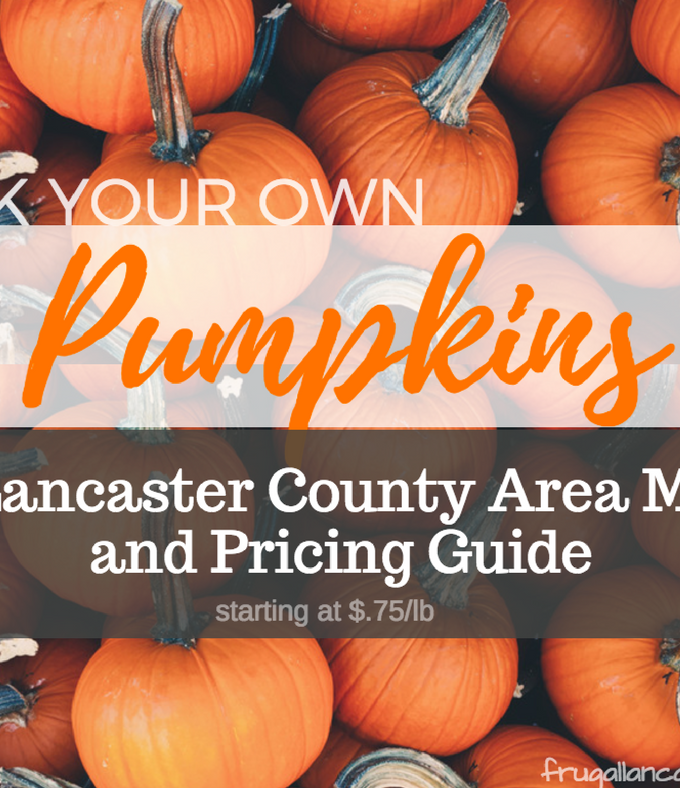 Places to Pick Your Own Pumpkins in Lancaster County