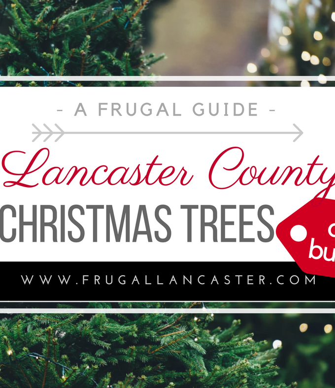 Where To Buy Affordable Christmas Trees in Lancater County