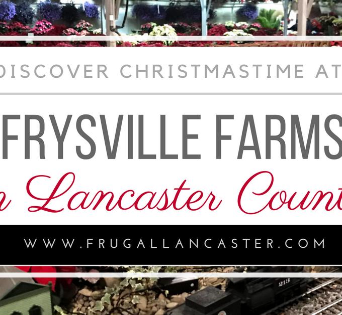 Frysville Farms at Christmastime: A Hidden secret of Lancaster County