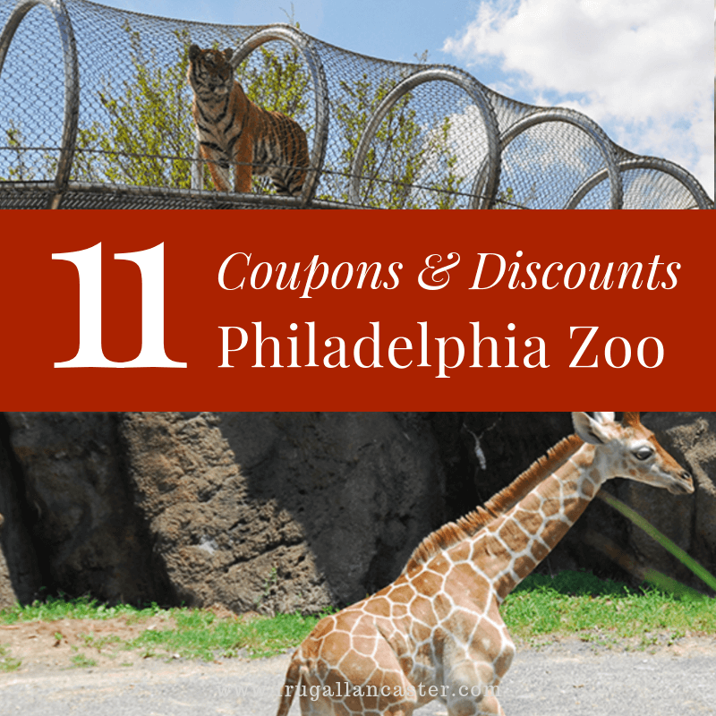 11 Ways To Save On Philadelphia Zoo Tickets Frugal Lancaster