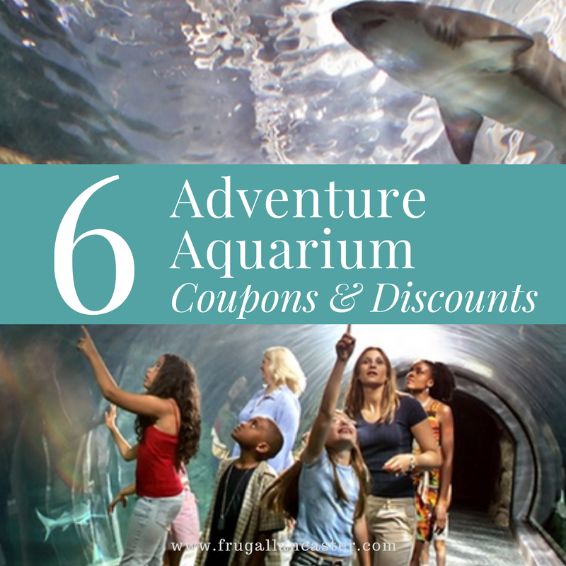 6 Ways To Save On Adventure Aquarium Tickets Frugal